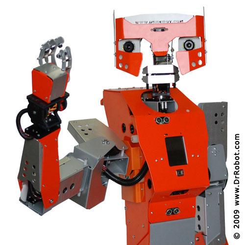 Hawk Robot