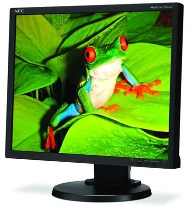 NEC MultiSync EA190M Standard-Aspect Ratio Display