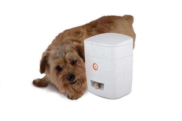 Wireless Pavlovian Canine Trainer