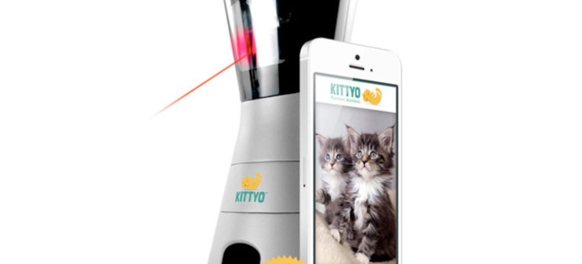 Kittyo cat monitor