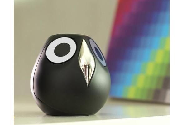Ulo Surveillance Owl