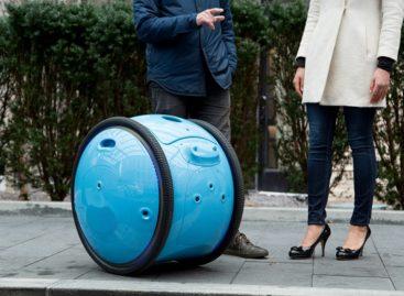 Gita Autonomous Cargo Robot