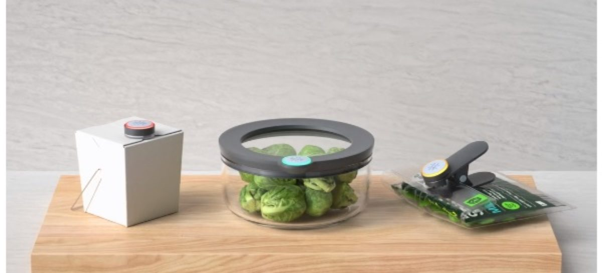 Ovie Smartware Offers Less Wastage From Food Leftovers